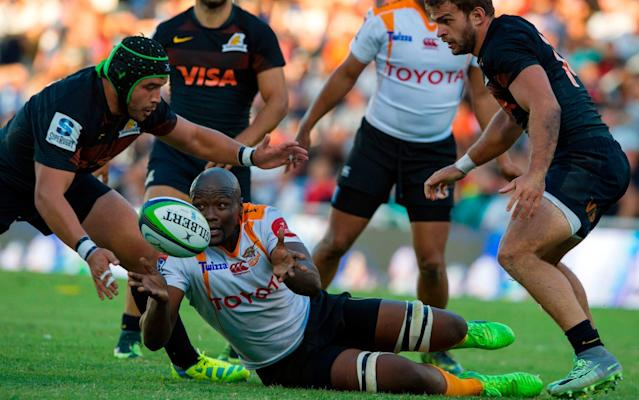 On the carpet: Argentina's Jaguares have joined the competition but the Cheetahs maye be culled from it - AFP