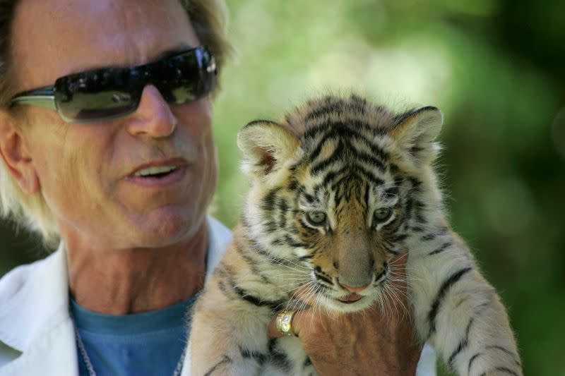 Illusionist Siegfried Fischbacher displays a 6-week-old tiger cub at his home in Las Vegas