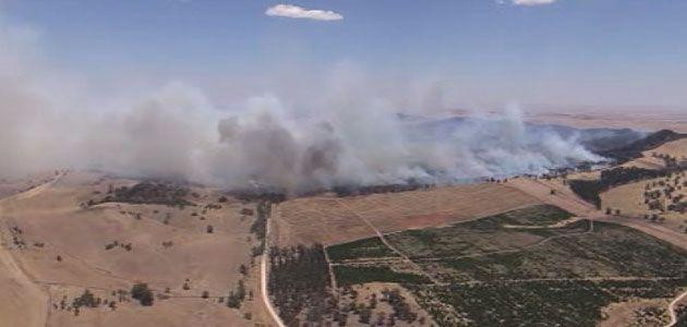 The forest fire as seen from the 7News chopper on Thursday. Photo: 7News.