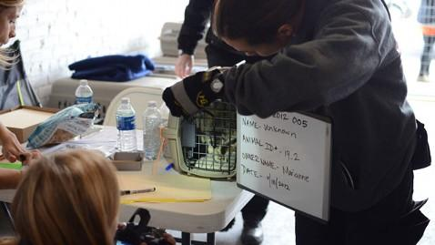 The ASPCA is urging Sandy pet owners to reclaim animals displaced by Superstorm Sandy.  Image credit: ASPCA.