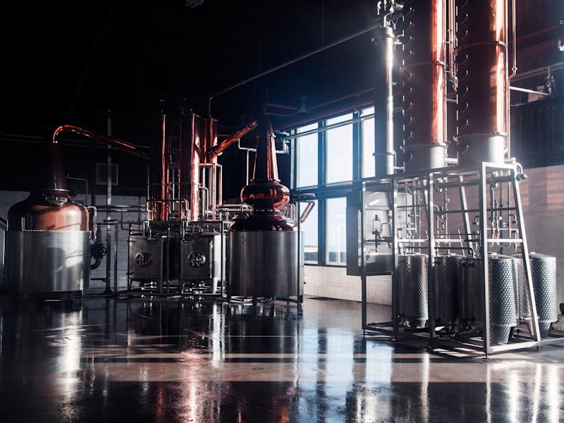 Why Scotland's Gin Is as Good as Its Whisky
