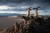 <p>These stunning photographs of the world's last remaining Mongolian eagle keepers show the incredible bond between man and bird. (Photo: Daniel Kordan/Caters News) </p>