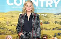 """'Parks and Recreation' actress Amy Poehler does not agree with the selfie phenomenon. Which, according to her, is based on the """"this is my face and everyone needs to see it all the time"""" idea. The comedian told Paper magazine that the """"amount of Instagram selfies is out of control""""."""