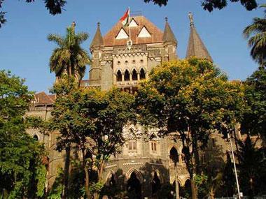 Bombay HC reacts sharply to city civic body's blanket permission for trimming trees, warns it could lead to their complete destruction