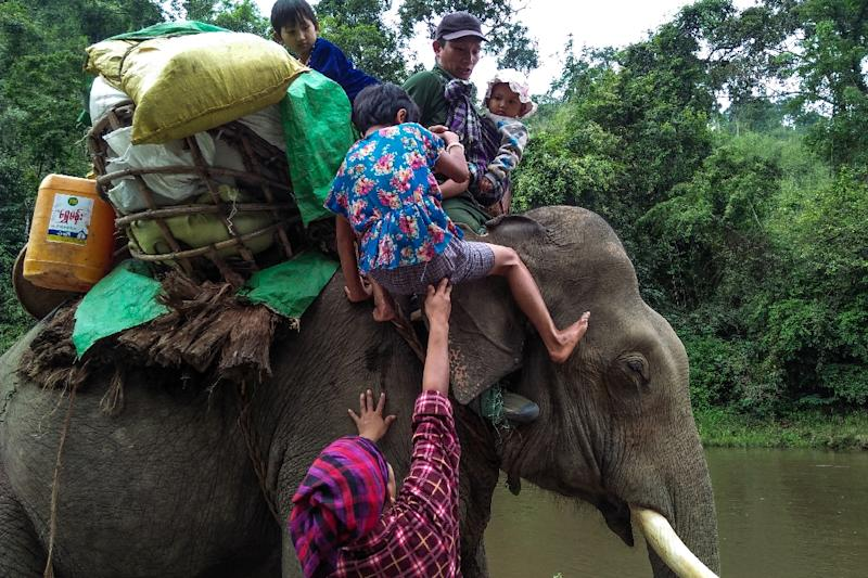 Working elephants are widely used in the rough terrain of Kachin state, including by rebel groups fighting Myanmar's army. (AFP Photo/-)