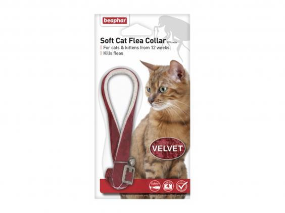With infanticide built-in, this collar will stop you worrying about the risk of fleas (Pets At Home)
