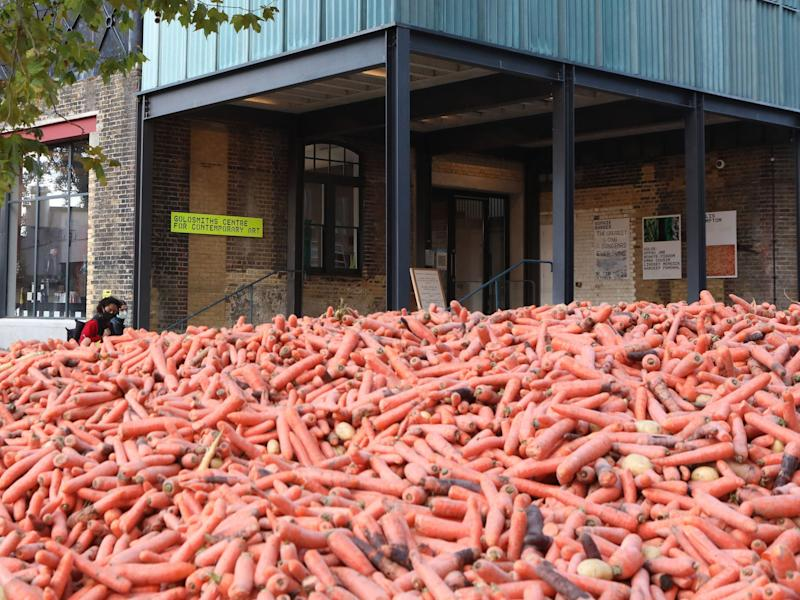 'Surreal' art installation criticised for wasting food by dumping 29 tonnes of carrots
