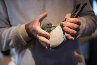Carlo Gyselbrecht, co-owner of Pipa, a Belgian auction house for racing pigeons, shows a two-year old female pigeon named New Kim after an auction in Knesselare, Belgium, Sunday, Nov. 15, 2020. A pigeon racing fan has paid a world record 1.6 million euros for the Belgian-bred bird, New Kim, in the once-quaint sport that seemed destined for near extinction only a few years back, people pay big money for the right bird. (AP Photo/Francisco Seco)