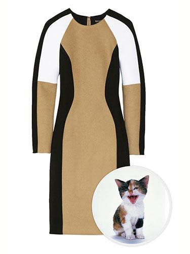 """<div class=""""caption-credit""""> Photo by: net-a-porter</div><b>Calico Cat</b> <br> What is black, white, and tan all over? A precious calico cat of course, but DKNY rivals its furry counterpart with its bodycon, neoprene stunner. Both are perfection for fall nuzzling. With amazing color-blocking DKNY Neoprene, Jersey and Wool-Blend Dress, $595; <a href=""""http://www.net-a-porter.com/product/380270"""" rel=""""nofollow noopener"""" target=""""_blank"""" data-ylk=""""slk:net-a-porter.com"""" class=""""link rapid-noclick-resp"""">net-a-porter.com</a>. <p> <b><a href=""""http://www.marieclaire.com/fashion/25-of-the-best-holiday-jewels?link=rel&dom=yah_life&src=syn&con=blog_marieclaire&mag=mar"""" rel=""""nofollow noopener"""" target=""""_blank"""" data-ylk=""""slk:Related: 25 of the Best Holiday Jewels"""" class=""""link rapid-noclick-resp"""">Related: 25 of the Best Holiday Jewels</a> <br> <a href=""""http://www.marieclaire.com/hair-beauty/5-beauty-tips-look-less-tired?link=rel&dom=yah_life&src=syn&con=blog_marieclaire&mag=mar"""" rel=""""nofollow noopener"""" target=""""_blank"""" data-ylk=""""slk:Related: 5 Beauty Tips to Make You Look Less Tired"""" class=""""link rapid-noclick-resp"""">Related: 5 Beauty Tips to Make You Look Less Tired</a></b> </p>"""