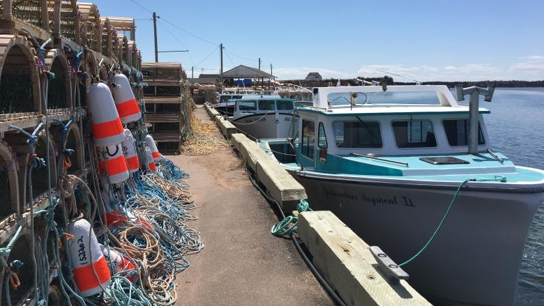 P.E.I. Fishermen's Association pleased with Fisheries Act changes