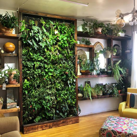 Vertical Garden Chicago: Vertical Gardens Are The Perfect Small Space Solution For