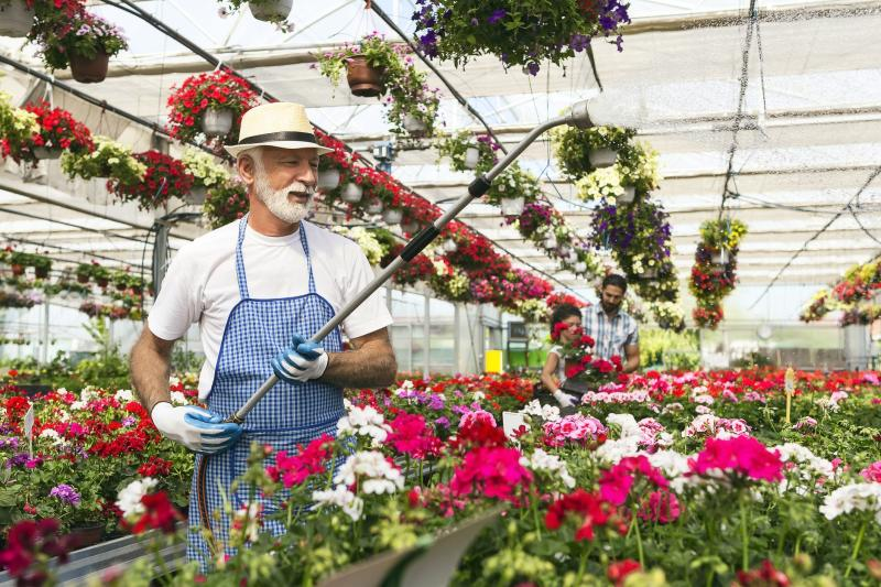 If you enjoy gardening, consider working part time at a nursery a few years before leaving your job.