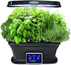 <p>If she loves plants and herbs, she'll enjoy this <span>AeroGarden Classic 9 Garden</span> ($256)</p>