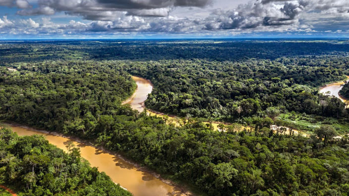 Image: The home of the Dois Irmaos community, in Chico Mendes Extractive Reserve, Acre state, Brazil. (Marizilda Cruppe / Greenpeace)