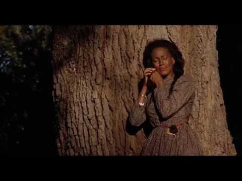 """<p>When a film is powerful enough to inspire Beyoncé, it's time to sit up and take note. The singer's 2016 visual album <em>Lemonade</em> was influenced by 1991's <em>Daughters of the Dust</em>—the first film from a Black female director to ever <a href=""""https://www.npr.org/2016/11/20/502797705/daughters-of-the-dust-re-released-following-attention-from-beyonc"""" rel=""""nofollow noopener"""" target=""""_blank"""" data-ylk=""""slk:achieve national theatrical distribution"""" class=""""link rapid-noclick-resp"""">achieve national theatrical distribution</a>. <em>Lemonade</em> allowed a new legion of fans to enjoy Julie Dash's rich storytelling when it was <a href=""""https://www.vanityfair.com/hollywood/2016/08/daughters-of-the-dust-exclusive"""" rel=""""nofollow noopener"""" target=""""_blank"""" data-ylk=""""slk:subsequently re-released"""" class=""""link rapid-noclick-resp"""">subsequently re-released</a> at the Toronto International Film Festival and in theatres nationwide. Commanding and visually stunning, <em>Daughters of the Dust</em> is set at the turn of the 20th century and follows three generations of Gullah women as they prepare to migrate North from their long-time home on Saint Helena Island, where their ancestors were once enslaved. <br><br><a class=""""link rapid-noclick-resp"""" href=""""https://www.amazon.com/Daughters-Dust-Cheryl-Lynn-Bruce/dp/B084DKNGF6/?tag=syn-yahoo-20&ascsubtag=%5Bartid%7C10063.g.35813482%5Bsrc%7Cyahoo-us"""" rel=""""nofollow noopener"""" target=""""_blank"""" data-ylk=""""slk:Watch on Amazon Prime"""">Watch on Amazon Prime</a></p><p><a href=""""https://www.youtube.com/watch?v=zdMxR2M_ddM"""" rel=""""nofollow noopener"""" target=""""_blank"""" data-ylk=""""slk:See the original post on Youtube"""" class=""""link rapid-noclick-resp"""">See the original post on Youtube</a></p>"""