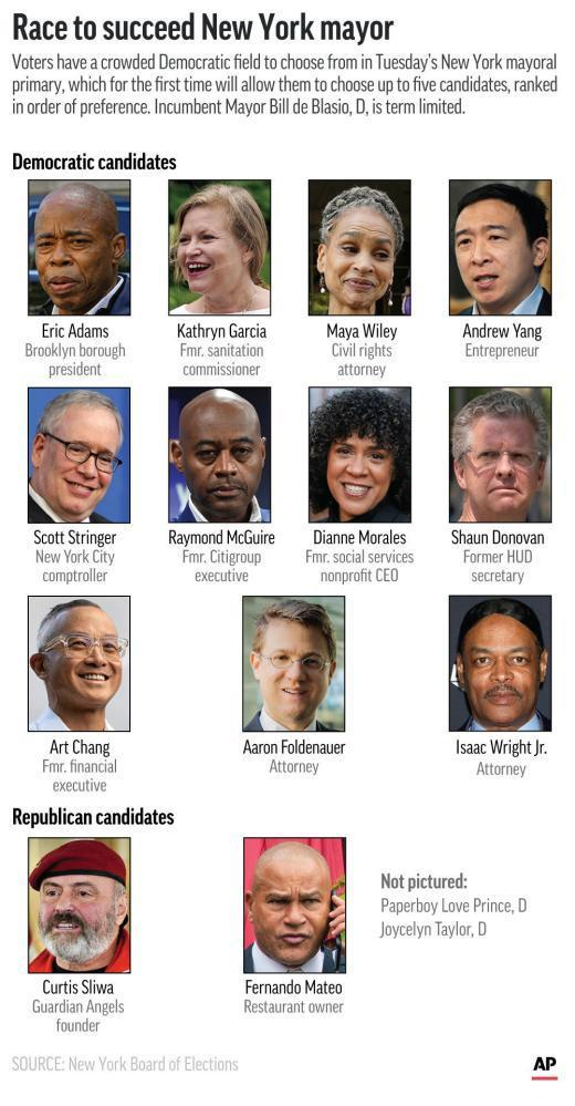 The field of candidates in Tuesday's New York mayoral primary. (AP Graphic)