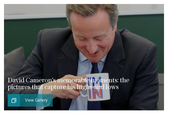David Cameron - highs and lows gallery