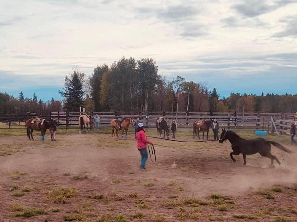 Students from Sunchild First Nation learn about horses during equine lessons at Twisted Sisters Riding Academy. (Sunchild First Nation School/Facebook - image credit)