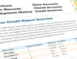 Pull your other credit reports