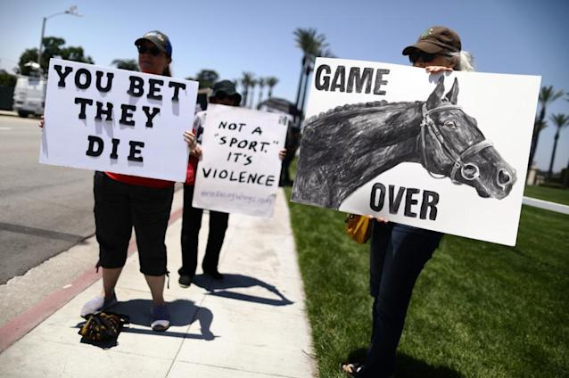 """<span class=""""element-image__caption"""">Animal rights activists protest horse racing deaths outside Santa Anita Park in June.</span> <span class=""""element-image__credit"""">Photograph: Mario Tama/Getty Images</span>"""