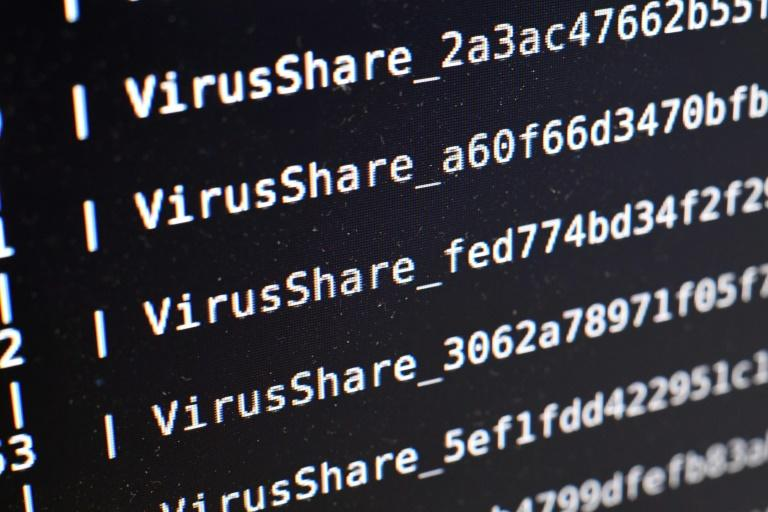 Most of the COVID-themed cyberattacks appear to be financially motivated, researchers say (AFP Photo/DAMIEN MEYER)