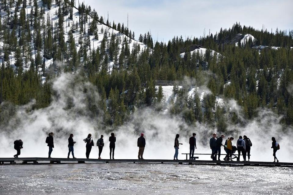 Visitors at Yellowstone, Wyoming  (Copyright 2021 The Associated Press. All rights reserved.)