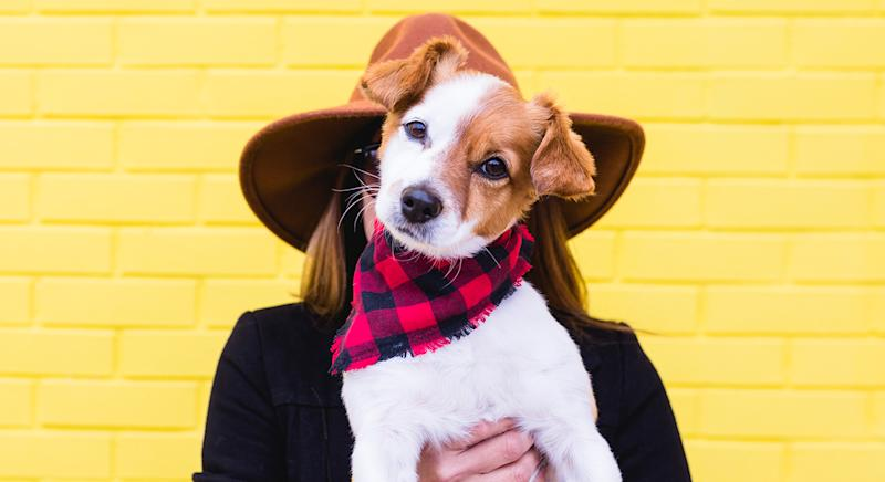 You can now buy a bandana for your dog that matches you face mask. (Getty Images)