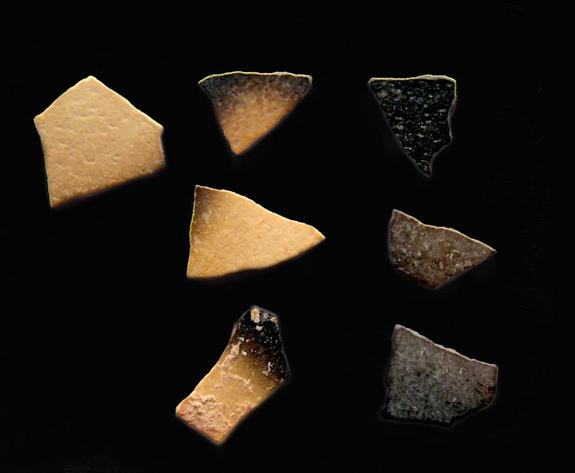 Visibly brunt <i>Genyornis</i> eggshells that were burnt by human campfires, rather than natural fires, some 50,000 years ago.