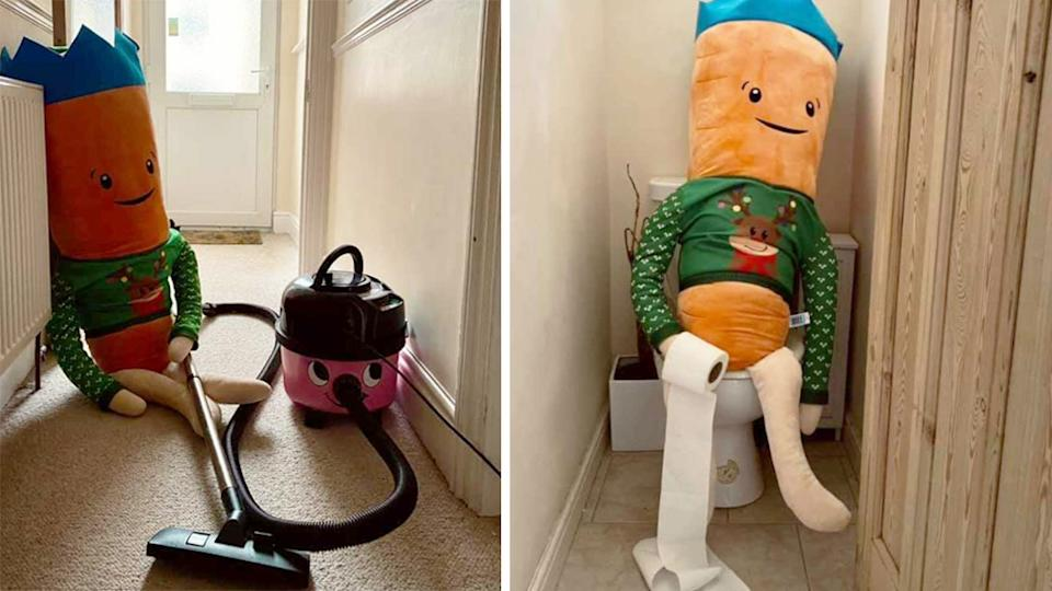 aldi kevin the carrot funny photos