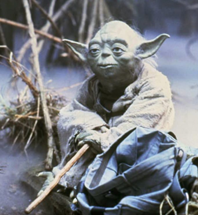 <p>Before the Baby Yoda craze, Master Yoda was a Jedi icon who spoke in confusing out of sequence prose to train young Luke Skywalker. </p>