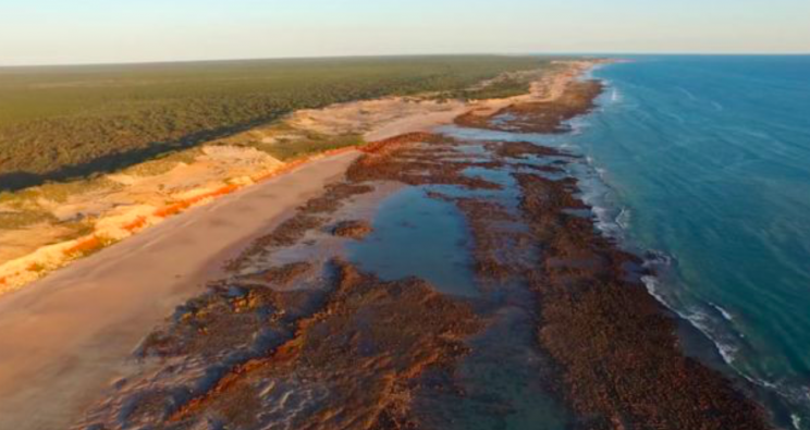 The footprints were discovered on a stretch of beach in Western Australia (Queensland University/James Cook University)