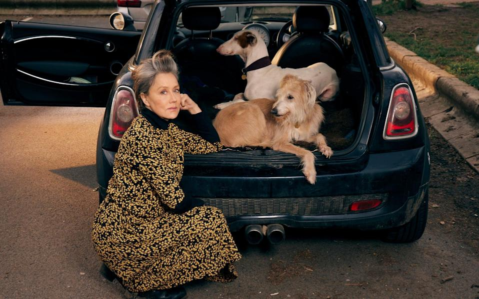 Kate Spicer's older dog, Wolfy, is unaggressive but finds puppies annoying