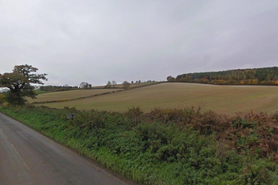 The plane crashed in a field in the village of Stonor (file image): Google Street View