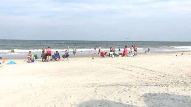 Two shark bites on Fernandina Beach
