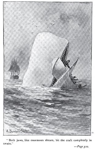 382px-Moby_Dick_p510_illustration.jpg