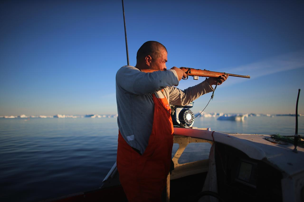 ILULISSAT, GREENLAND - JULY 22: Fisherman, Inunnguaq Petersen, hunts for seal as he waits for fish to catch on the line he put out near icebergs that broke off from the Jakobshavn Glacier on July 22, 2013 in Ilulissat, Greenland. As the sea levels around the globe rise, researchers affilitated with the National Science Foundation and other organizations are studying the phenomena of the melting glaciers and its long-term ramifications. The warmer temperatures that have had an effect on the glaciers in Greenland also have altered the ways in which the local populace farm, fish, hunt and even travel across land. In recent years, sea level rise in places such as Miami Beach has led to increased street flooding and prompted leaders such as New York City Mayor Michael Bloomberg to propose a $19.5 billion plan to boost the citys capacity to withstand future extreme weather events by, among other things, devising mechanisms to withstand flooding. (Photo by Joe Raedle/Getty Images)