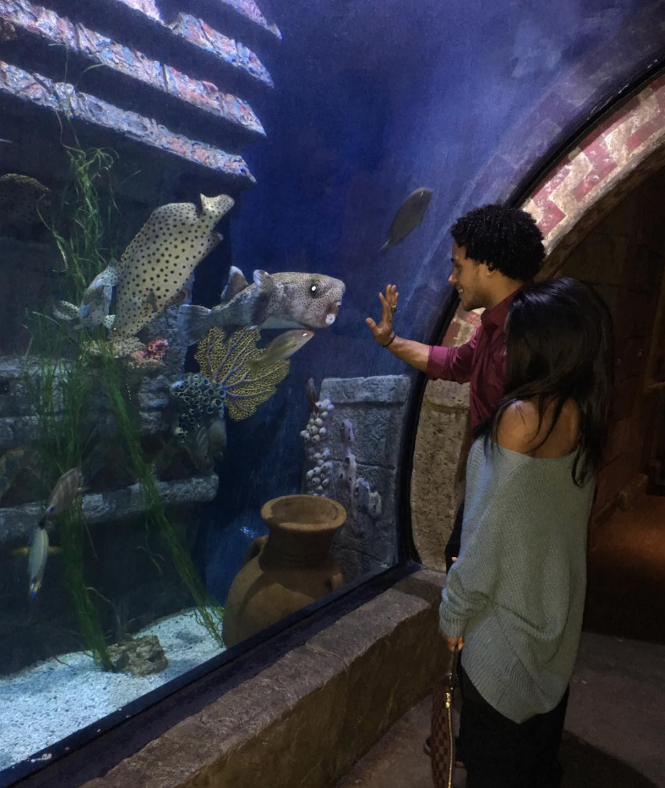 """<p>The pair let fans in on their cute """"aquarium date"""" in December. Although they appear serious, Biles has insisted that their careers are the priority for both of them. """"<span>We already know in each other's lives we don't come first, and that's OK with the both of us,"""" she told <a rel=""""nofollow noopener"""" href=""""http://people.com/sports/simone-biles-gets-real-stacey-ervin-relationship/"""" target=""""_blank"""" data-ylk=""""slk:People"""" class=""""link rapid-noclick-resp""""><em>People</em></a> in September 2017. """"So we do what we need to do, and then when we come together it's fine."""" </span>(Photo: <a rel=""""nofollow noopener"""" href=""""https://www.instagram.com/p/BdX-YGfHFer/?hl=en&taken-by=simonebiles"""" target=""""_blank"""" data-ylk=""""slk:Simone Biles via Instagram"""" class=""""link rapid-noclick-resp"""">Simone Biles via Instagram</a>) </p>"""