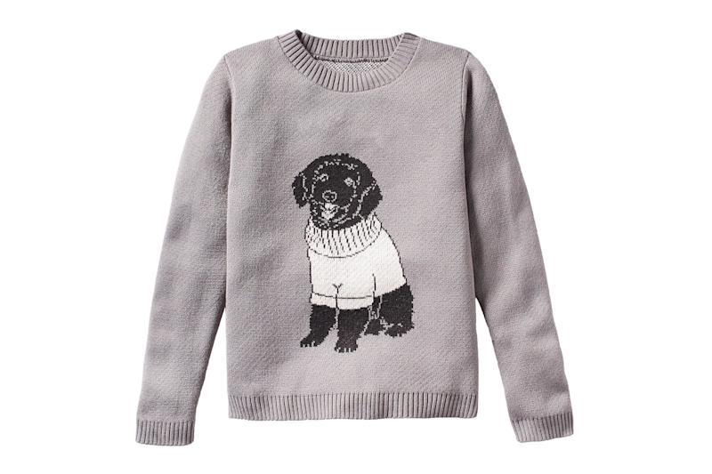 Now You Can Get a Custom Sweater Featuring Your Dog Wearing a Sweater, Because Why Not