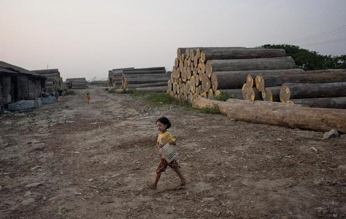 A girl carries a basket at a logging storage site on the outskirts of Yangon, Myanmar in 2014 (AFP Photo/Ye Aung Thu)