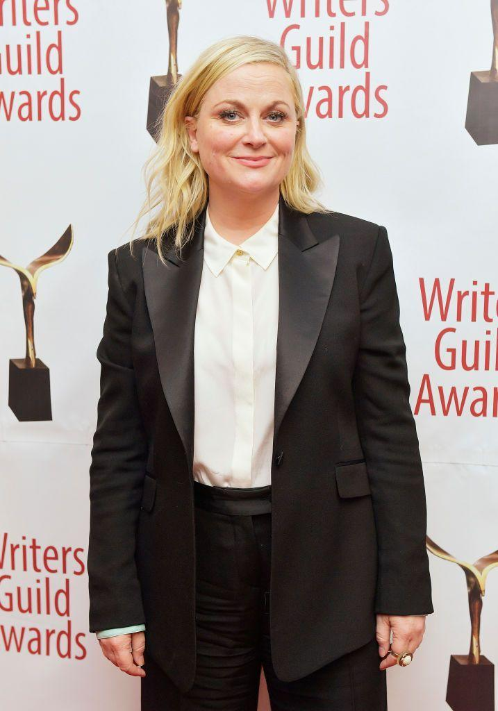 <p>From starring in <em>Parks and Recreation</em> to cocreating <em>Russian Doll </em>to running a wine store, Amy Poehler proves that Virgos are multitalented.</p>