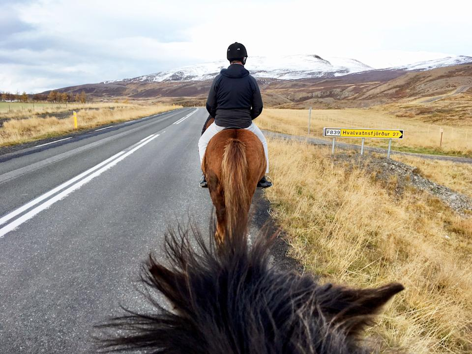 On-board riding a horse on the road. Source: Getty Images