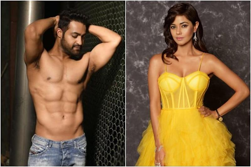 Hyderabad Police Book Jr NTR Fans For Threatening Actress Meera Chopra With Gang Rape