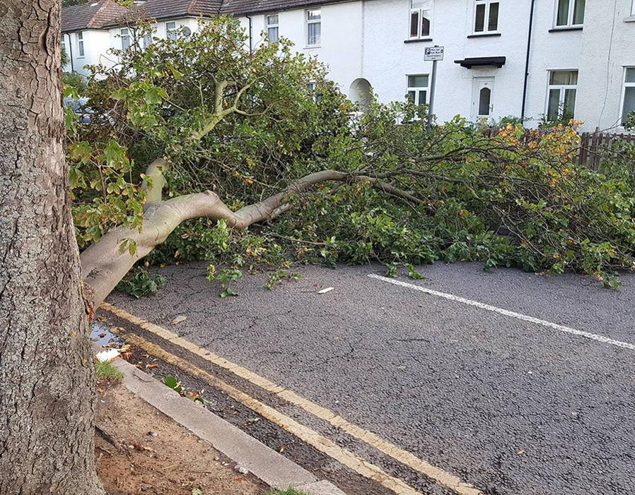 <p>A fallen tree blocks the road after the storm caused havoc in the UK overnight. Commuters have been warned to take care following the severe weather.(PA) </p>