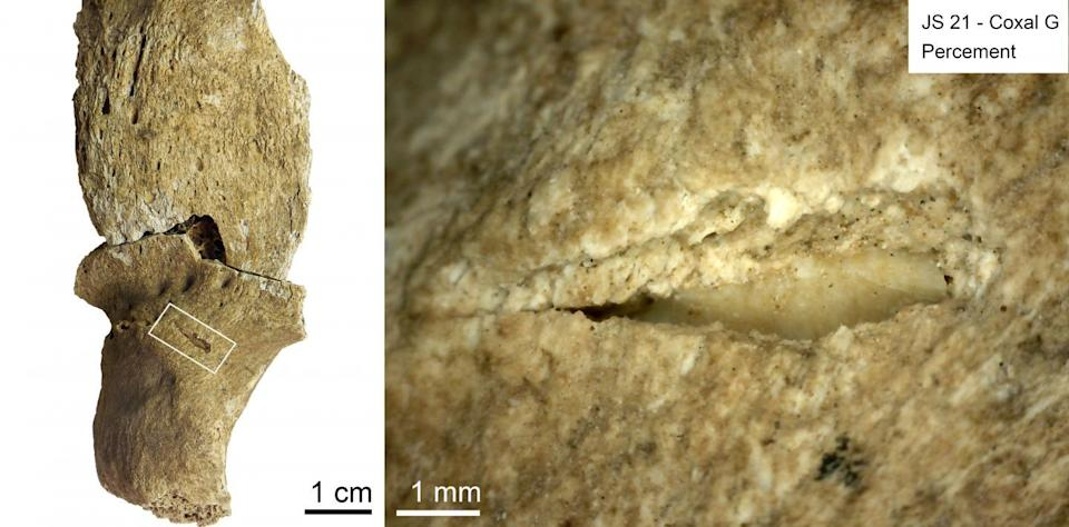 """A team of French researchers has reanalyzed fossils from a 13,000-year-old combat """"cemetery"""" and they say it was the result of sustained warfare over lifetime periods."""