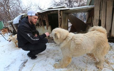 <span>Olympic skier Gus Kenworthy rescued a puppy from a dog farm in February</span> <span>Credit: Ahn Young-joon/AP </span>