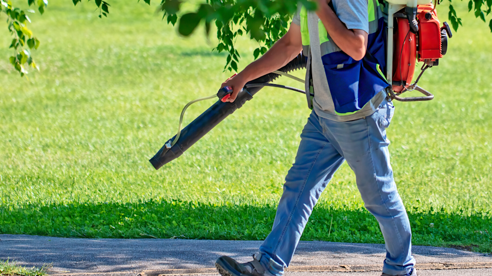 Make sure your lawn in tip-top shape to keep bugs and pests away.