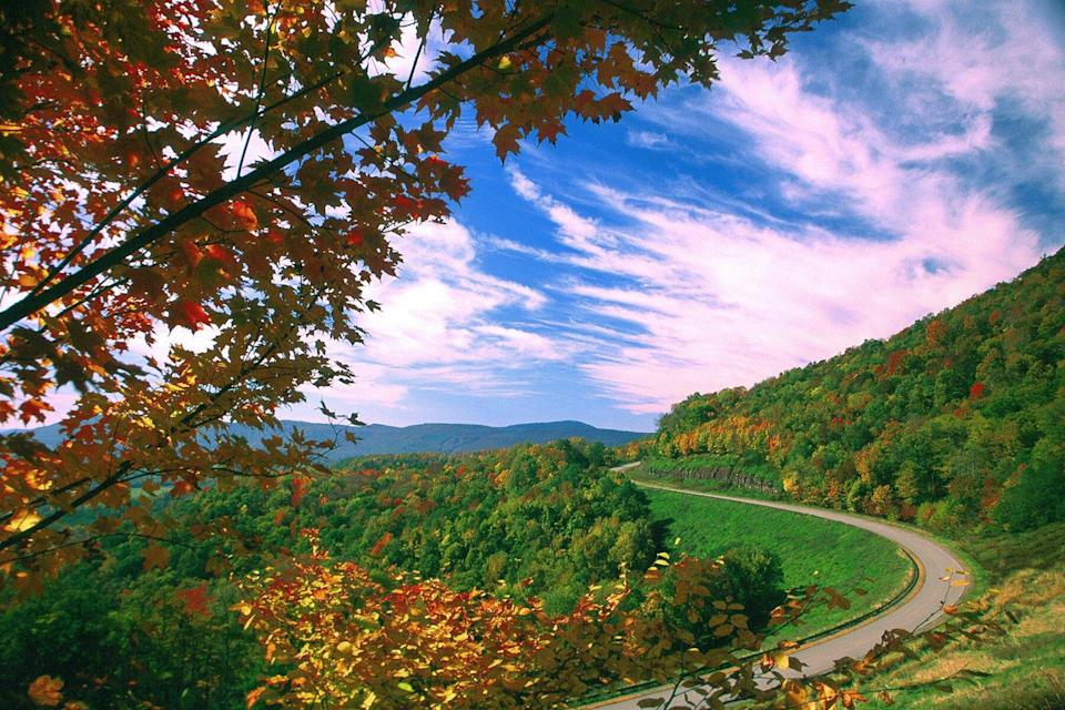 Autum View of the Highland Scenic Highway Pocahontas County West Virginia