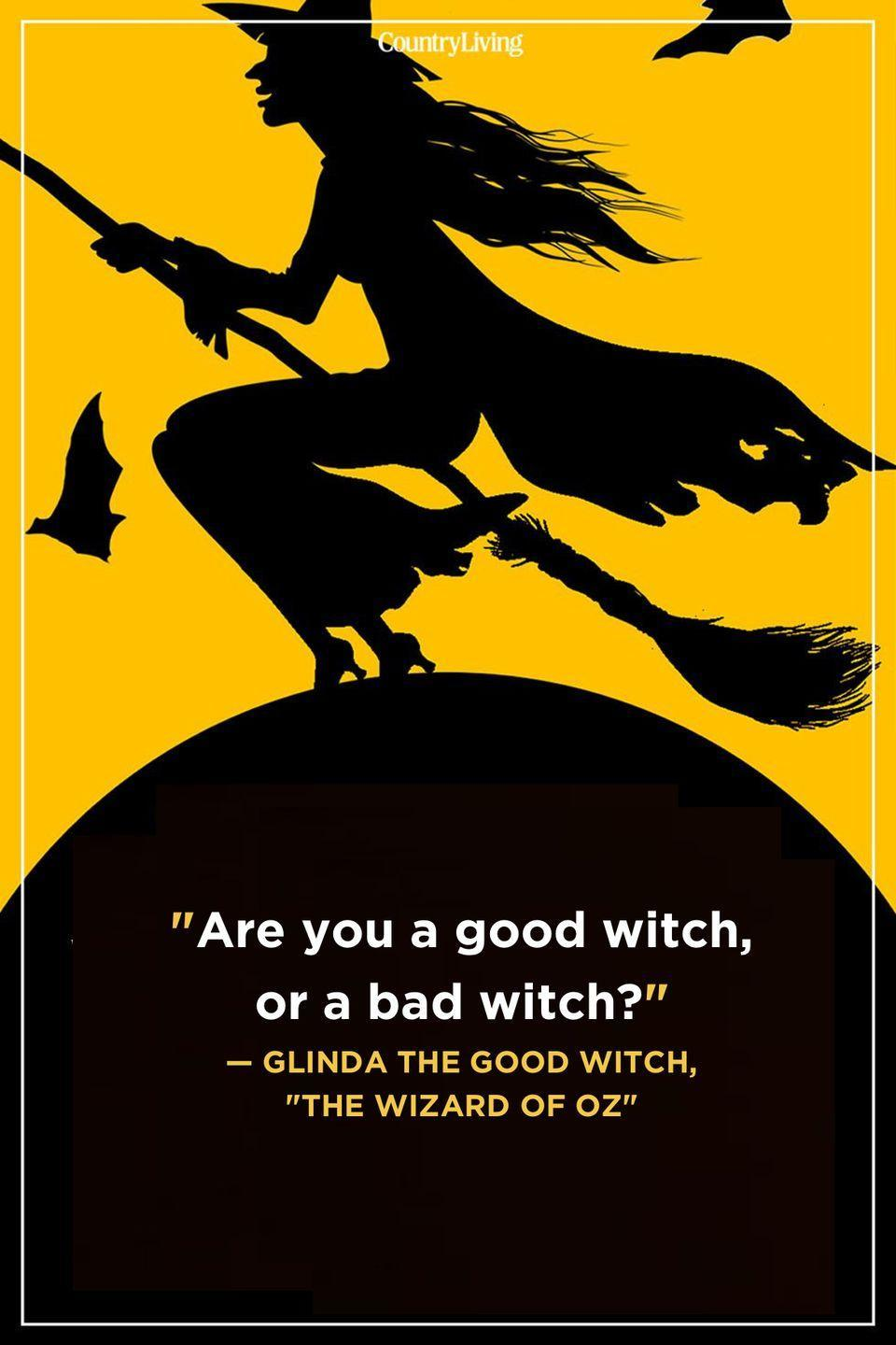 """<p>""""Are you a good witch, or a bad witch?""""</p>"""