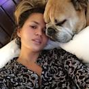 """<p><strong>When: Sept. 5, 2015 </strong><br> """"Movies in bed with my puddy buddy. And before a dog in bed gets you all riled up, just know that we stink equally."""" (Photo: Instagram) </p>"""