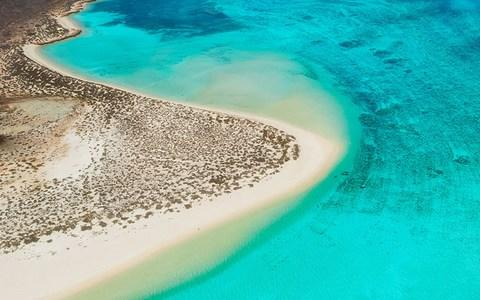 The Ningaloo Reef - Credit: AP